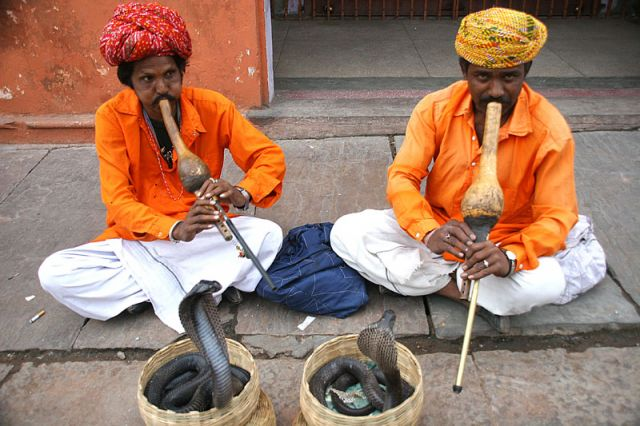 Zdj�cia: JAJPUR, Czarodzieje, INDIE