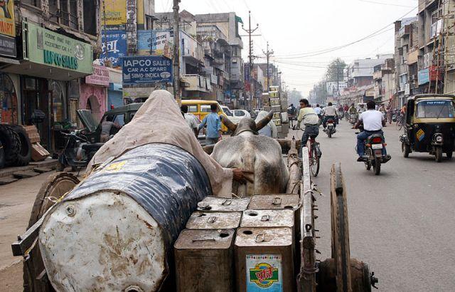 Zdjęcia: AGRA, * * *, INDIE