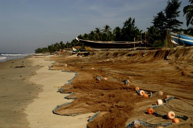 Zdjęcia: Tarkali, Konkan Coast, sieci, INDIE