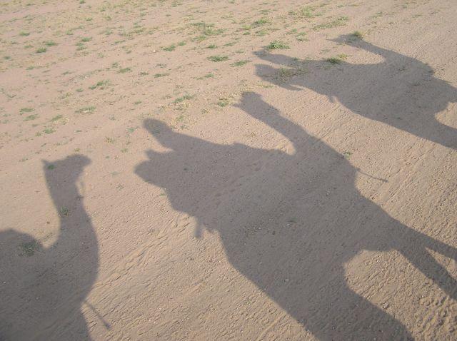 Zdjęcia: Jaisalmer, Rajastan, ...krawana, INDIE