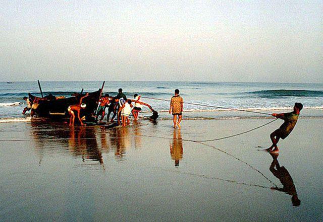 Zdjęcia: Goa, Poranny polów, INDIE