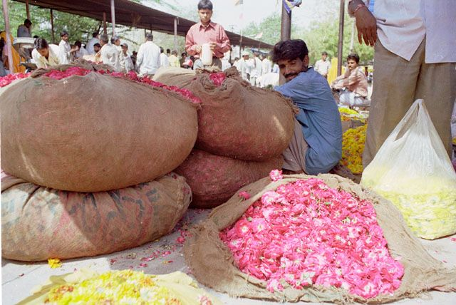 Zdjęcia: Jaipur, Rajasthan, bazar kwiatów, INDIE