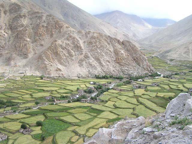Zdjęcia: Dolina w drodze nad jezioro Pagong, Ladakh, Dolina Ladakhu, INDIE