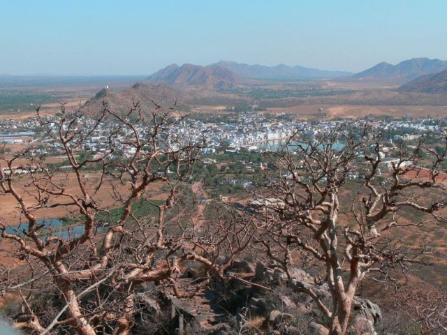Zdjęcia: Pushkar, Radżastan, W sercu pustyni, INDIE