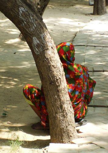 Zdjęcia: gdzies na szlaku.., pstrokacizna w modzie:), INDIE