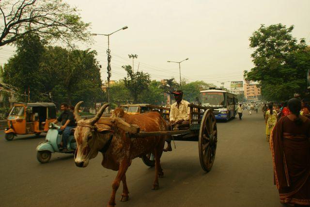 Zdjęcia: Indie, Indie, Nowoczesność , INDIE