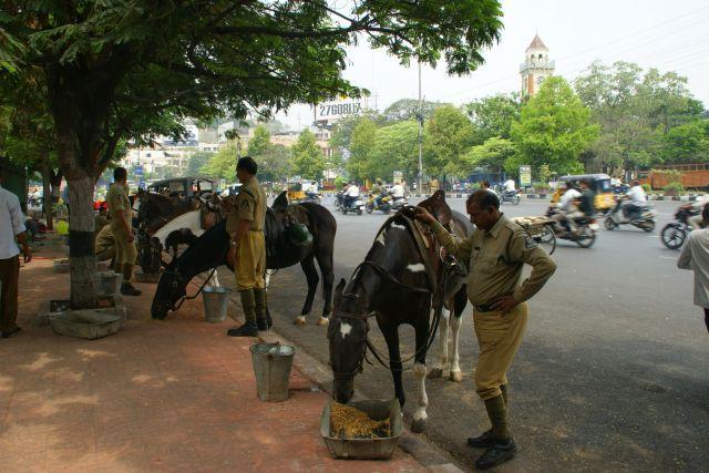 Zdjęcia: Indie, Indie, W żłobie  dano, INDIE