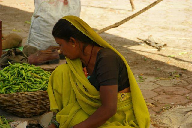 Zdjęcia: Mandi, Mandi, Ostra, INDIE