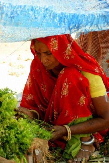 Zdjęcia: Mandi, Mandi, Zadaszona, INDIE