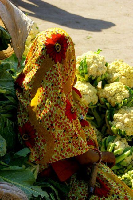 Zdjęcia: Mandi, Mandi, W kalafiorach, INDIE