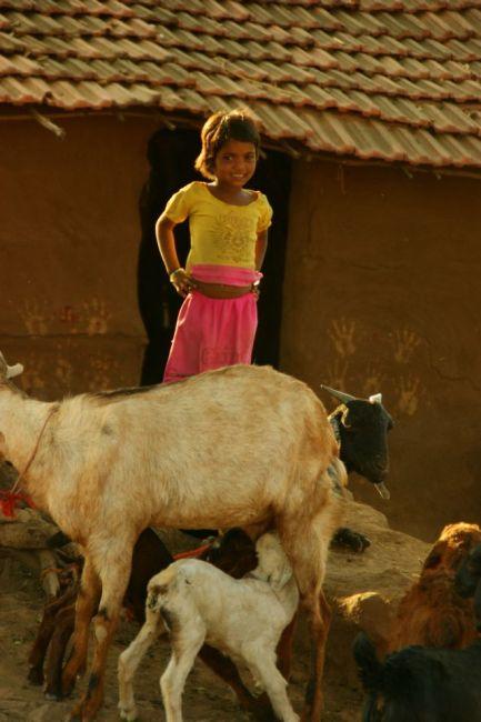 Zdjęcia: Mandi, Mandi, Oj, INDIE