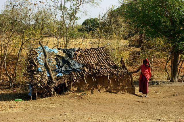 Zdjęcia: Mandi, Mandi, Właścicielka , INDIE