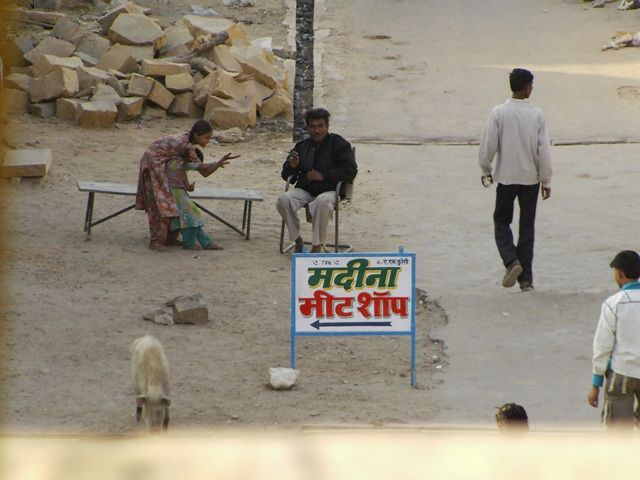 Zdjęcia: Jaisalmer - pustynia Thar, Rajasthan, święta świnka...:-)???, INDIE