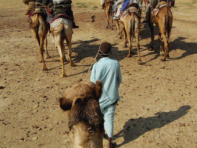 Zdj�cia: Jaisalmer - pustynia Thar, Rajasthan, w drodze..., INDIE