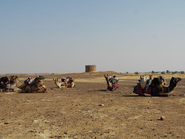 Zdjęcia: Jaisalmer - pustynia Thar, Rajasthan, w drodze..., INDIE
