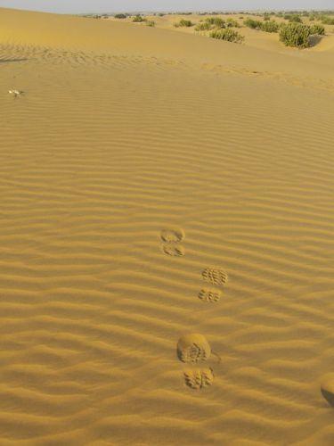 Zdjęcia: Jaisalmer - pustynia Thar, Rajasthan, ślady:-), INDIE