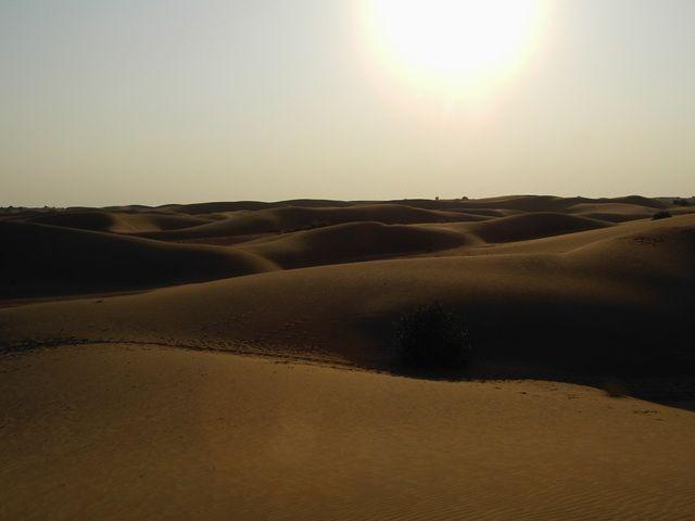 Zdjęcia: Jaisalmer - pustynia Thar, Rajasthan, zachód słońca, INDIE