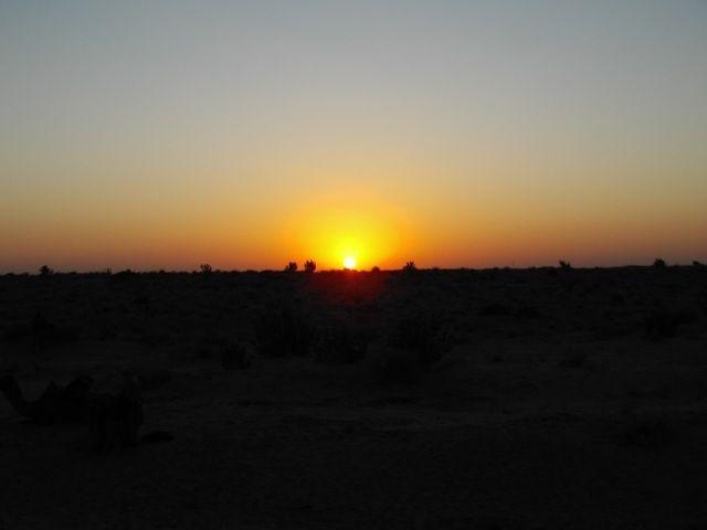Zdjęcia: Jaisalmer - pustynia Thar, Rajasthan, wschód słońca na pustyni Thar, INDIE