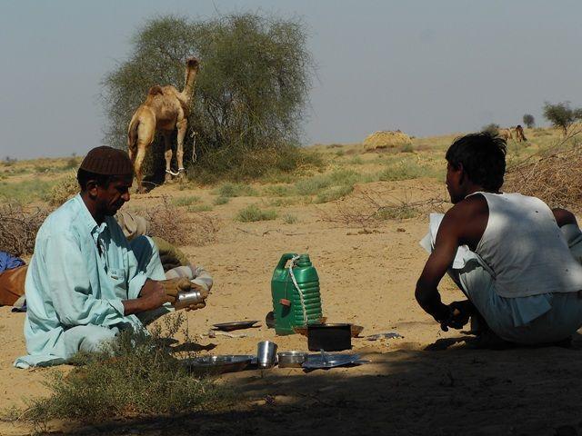 Zdjęcia: Jaisalmer - pustynia Thar, Rajasthan, mycie garów..:-), INDIE