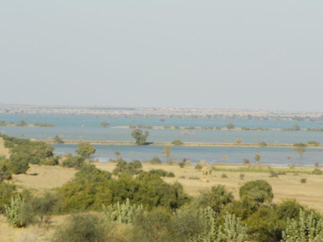 Zdjęcia: Jaisalmer - pustynia Thar, Rajasthan, jezioro na pustynii?, INDIE
