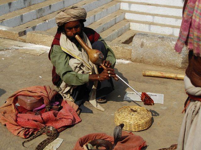 Zdjęcia: Varanasi, Uttar Pradesh, zaklinacz, INDIE