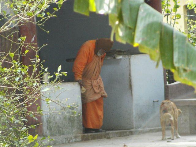 Zdjęcia: Rishikesh, Uttaranchal, nauczyciel?, INDIE