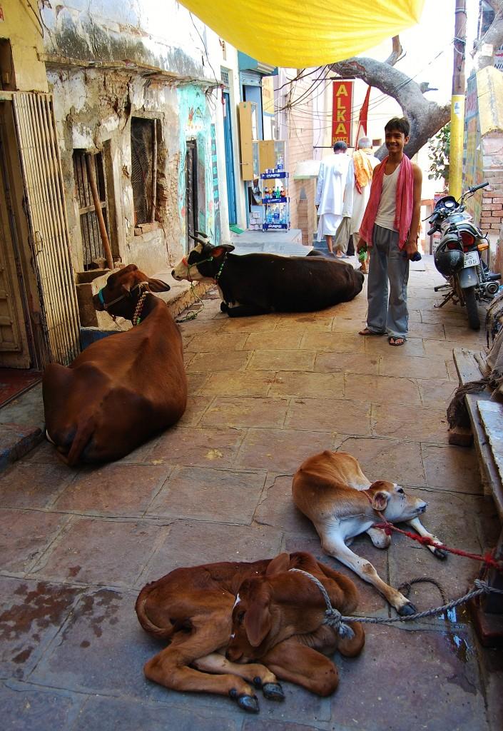 Zdjęcia: Varanasi, Uttar Pradesh, Zaułek, INDIE