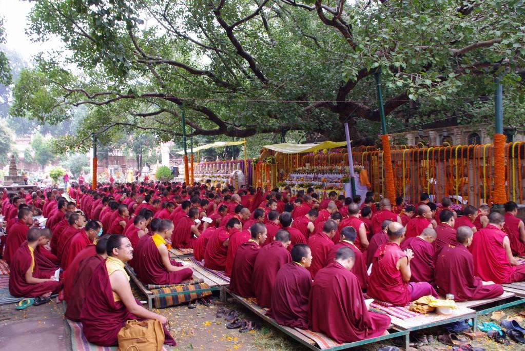 Zdjęcia: Bodh Gaya, Bihar, Mnisi pod figowcem pagodowym, INDIE
