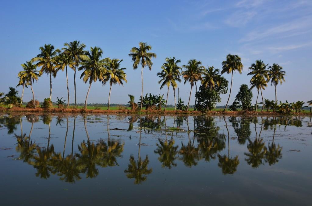 Zdjęcia: Kerala backwaters -Alappuzha, Kerala, Odbicia, INDIE