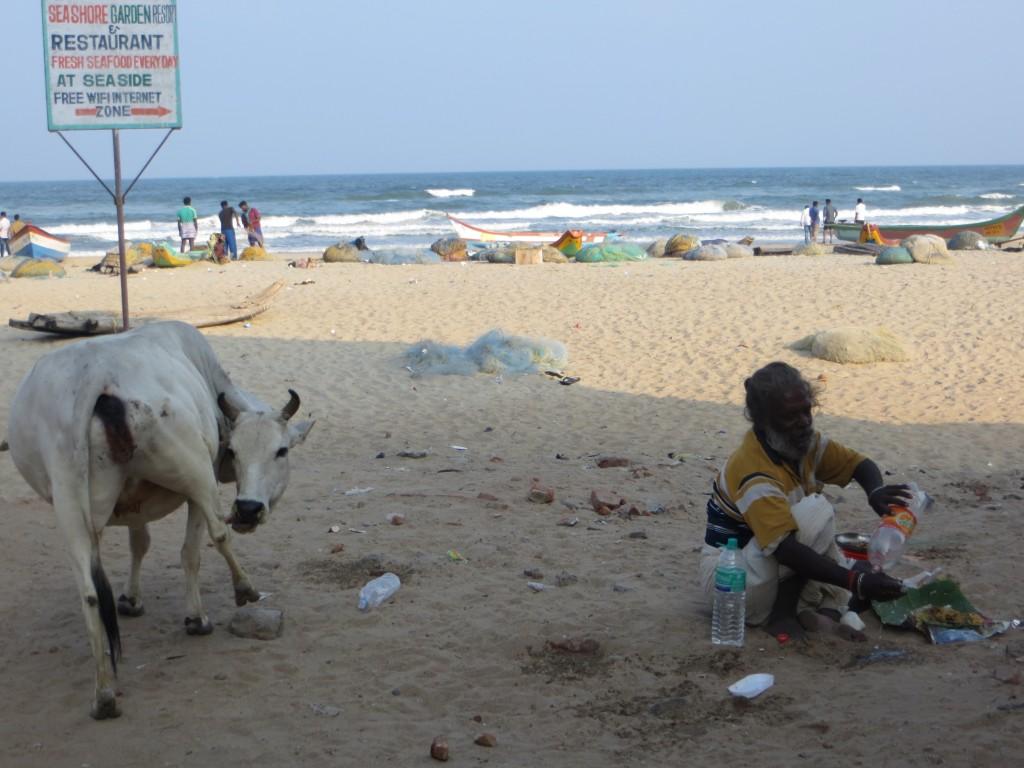 Zdjęcia: na plaży, Tamil Nadu, przepraszam, ja tu tylko na chwilkę, INDIE