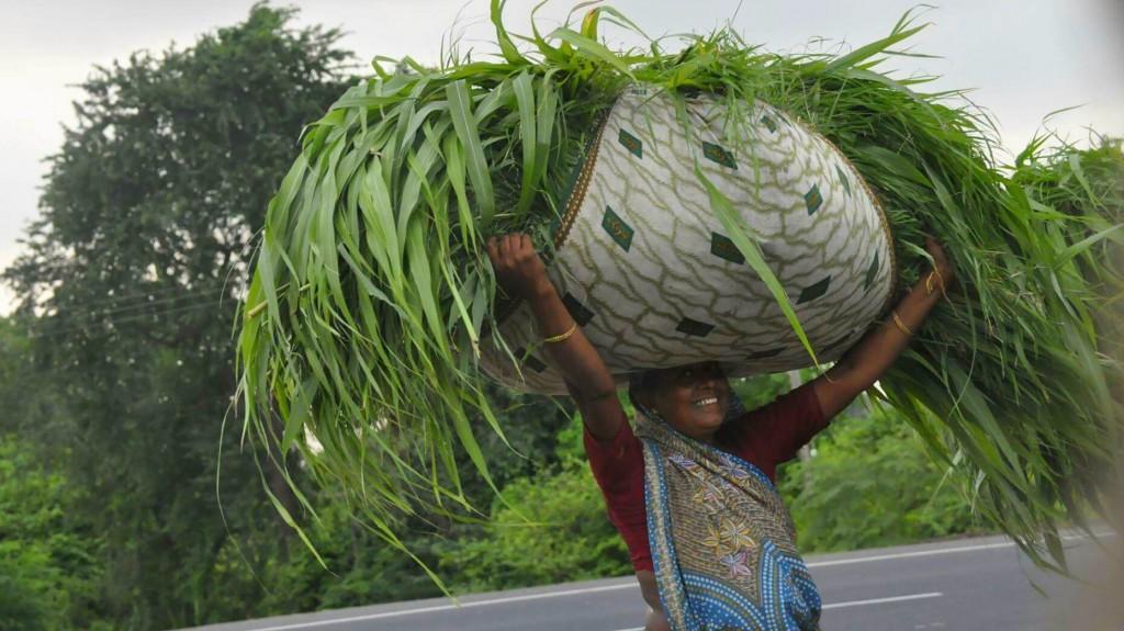 Zdjęcia: Vadodara, Gujarat, Indie, what else you can carry on your head?, INDIE