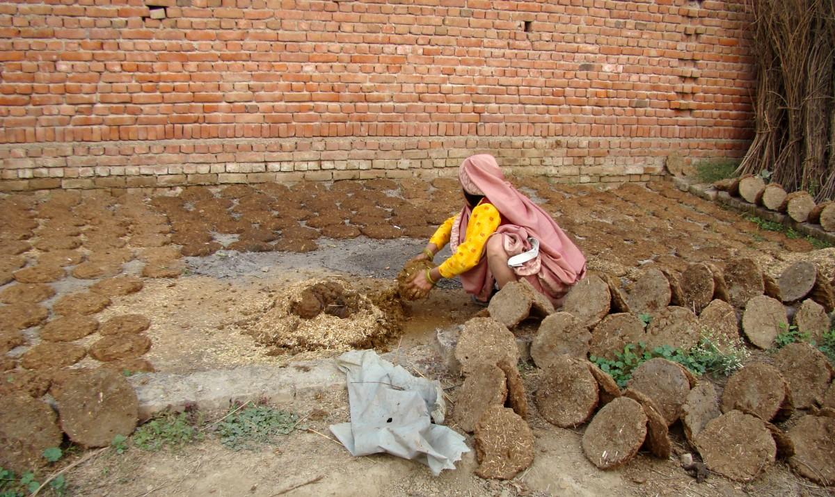 Zdjęcia: wioska, Radżastan, Nie święci.... lepią ;), INDIE