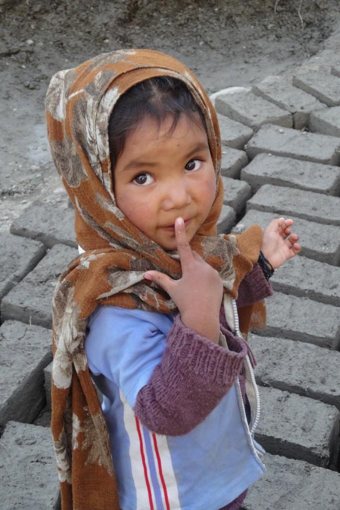 Zdjęcia:   , Himalaje, Markha Valley, INDIE
