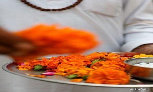 Zdjęcie INDIE / Uttarakhand / Rishikesh / blogoslawienstwo