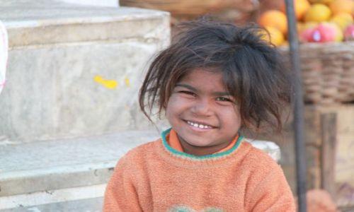Zdjęcie INDIE / Rajasthan / Udaipur / łobuz