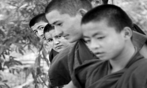 Zdjęcie INDIE / Wschód / Bodh Gaja / Buddyjscy mnisi