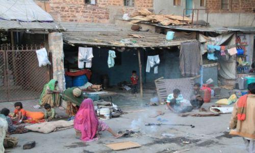Zdjęcie INDIE / Rajasthan / Jodhpur / Życie codzienne