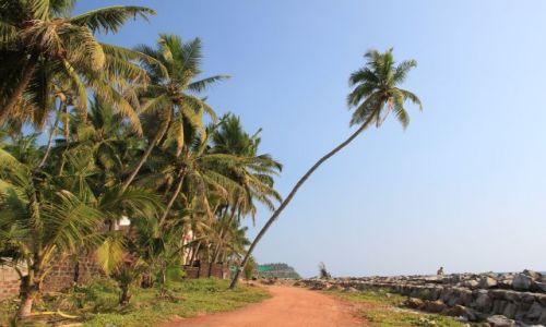 Zdjecie INDIE / Kerala / Verkala / Pochyłą