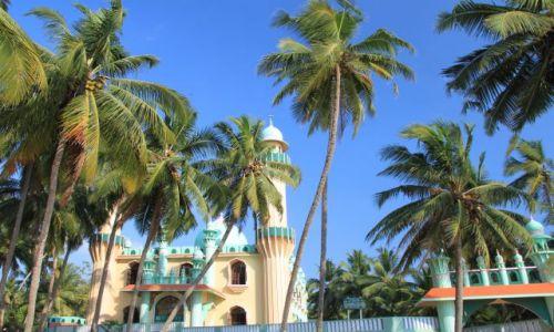 Zdjecie INDIE / Kerala / Verkala / świątynia w palmach