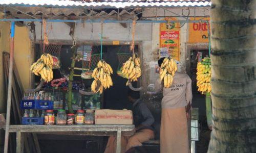 Zdjecie INDIE / Kerala / Kumarakum / Sklepik