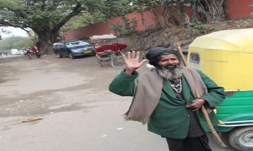 Zdjęcie INDIE / Delhi / Old Delhi / wędrowiec
