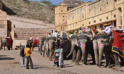 Zdjecie INDIE / Rajasthan / Jaipur / Czekajac na turystow