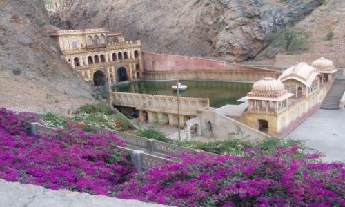 INDIE / Rajasthan / jaipur / Swiatynia Malp