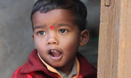 Zdjecie INDIE / Rajasthan / Udaipur / Konkurs