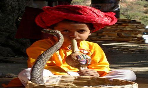 INDIE / Rajasthan / Samode / KONKURS