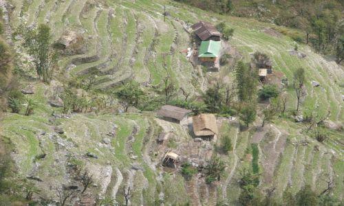 INDIE / Sikkim / Szlak klasztorny / Gospodarstwa