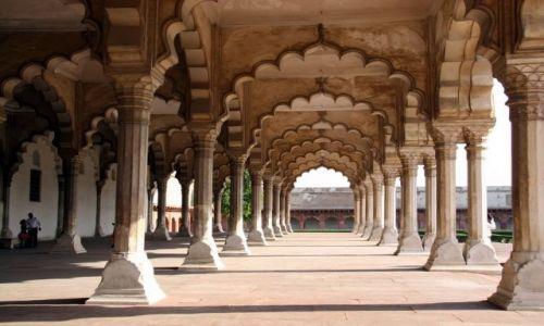 Zdjecie INDIE / brak / Agra  / To trzeba zobaczyć ...