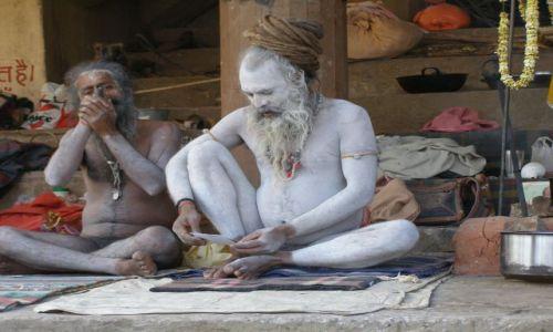 Zdjecie INDIE / Indie / brak /
