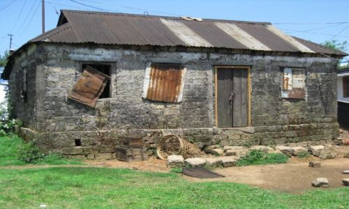 Zdjecie INDIE / Meghalaya / Cherrapuji / Martwa natura