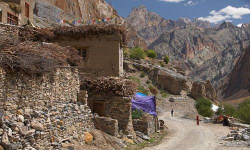 Zdjecie INDIE / Ladakh / Hunupatta / Kolorowe Himala